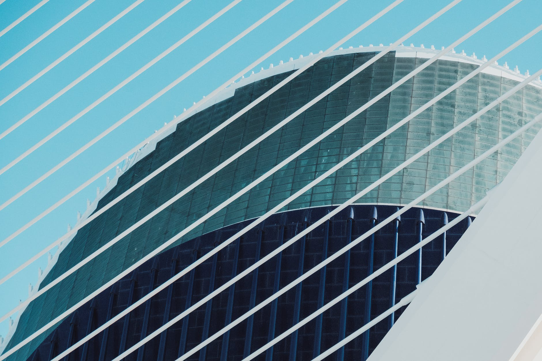 shallow focus photo of white and blue building
